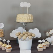 Gender Reveal Party { Thème nuage }
